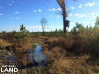 51.5 Acre Recreational Timber Inves