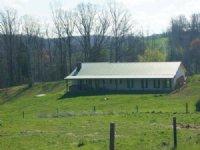 Turn-key Kentucky Cattle Farm