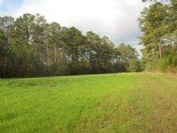 113.00 Acres Fishing Land, Hunting