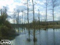 75 Acres Cedar Creek Deer And Ducks