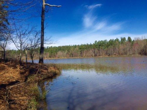 56-Acre Lake : Union Point : Greene County : Georgia