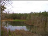 17.00 Acres Fishing Land, Hunting