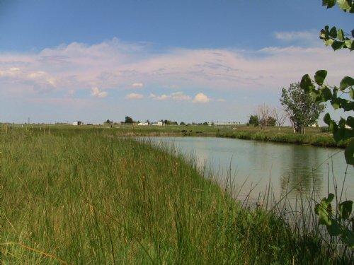 Blue Sky Farms And Development : Windsor : Weld County : Colorado