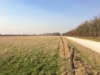 40 Acres : Gridley : Coffey County : Kansas