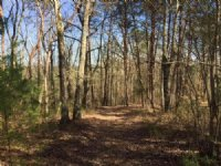 143.77 +/- Wooded Acres, Lafayette