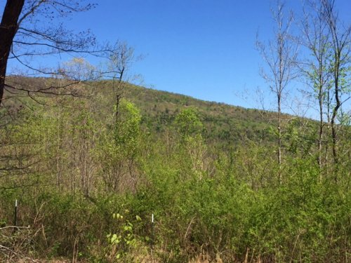 102+/- Acs Recreational Or Hunting : South Pittsburg : Marion County : Tennessee