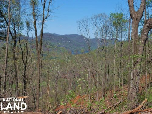 Foothills Homesite With Mountain Vi : Travelers Rest : Greenville County : South Carolina