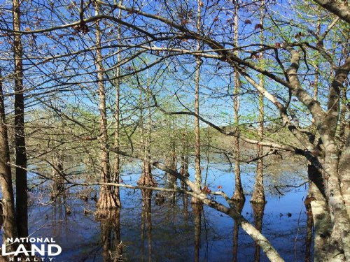 Hashuqua Creek : Macon : Noxubee County : Mississippi