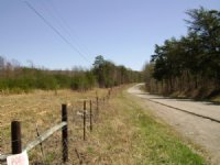 Hunt, Build And Enjoy The Views : Palmer : Grundy County : Tennessee