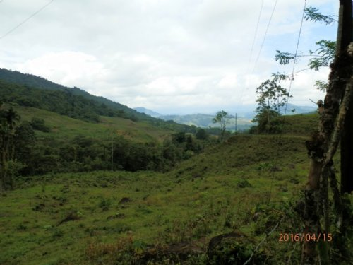 River Farm- 27ac Casas-fish-pasture : La Suiza De Turrialba : Costa Rica
