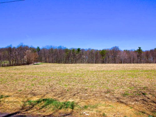 48+/- Acres Farm In Wapwallopen : Wapwallopen : Luzerne County : Pennsylvania