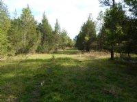 66-071 Hills Creek-furman Tract