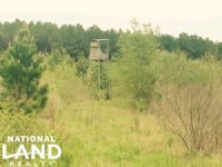 78 Acres Deer Hunting And Crp Land