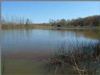 27.10 Acres Fishing Land, Hunting