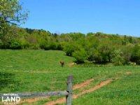 Clarkesville Farm With Development