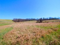 68± Acres Land In Unityville