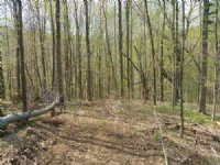 75 Acres Exceptional Hunting Land