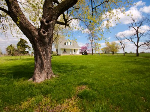 77 Acres - Sacajawea Rd : Sedalia : Pettis County : Missouri