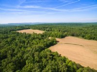 540 Acres On The Cumberland Plateau