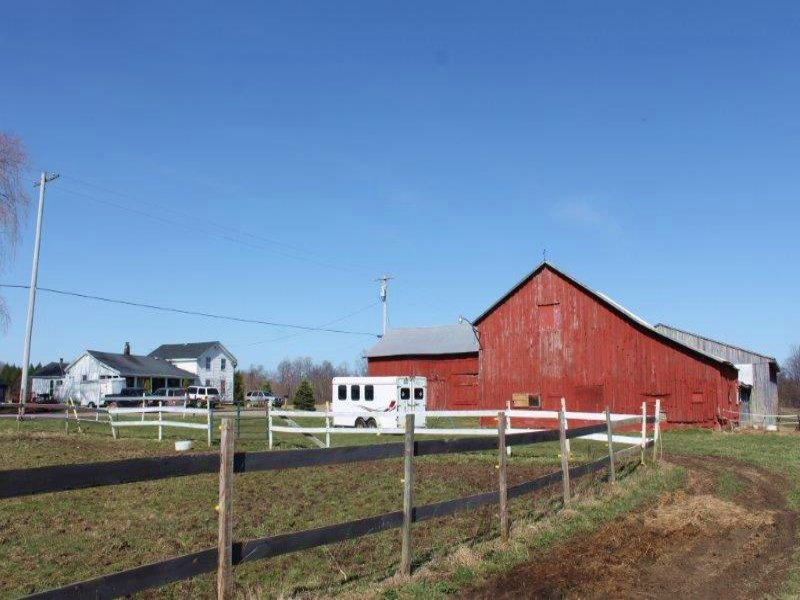 Horse Farm With Indoor Riding Arena : Farm for Sale : Mexico