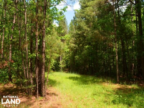 Athens Timberland With Development : Athens : Jackson County : Georgia