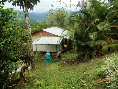 11 Ac Mt Farm, House, Orchard : Pejibaye De Cartago : Costa Rica