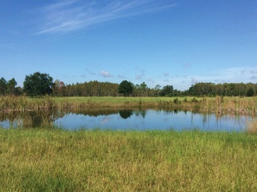 Bull Creek Ranch : Kenansville : Osceola County : Florida