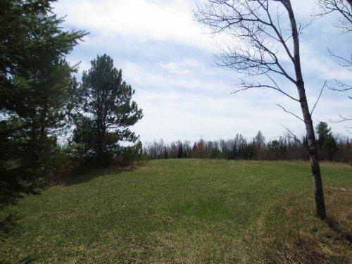 Lost Lake 12 Acres : Sugar Camp : Oneida County : Wisconsin