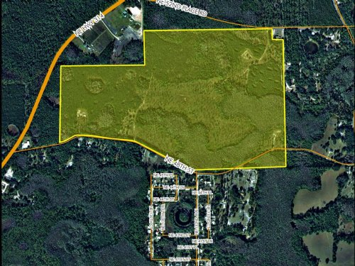 208 Acres Silver Springs : Silver Springs : Marion County : Florida