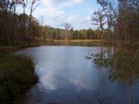 198 Acre Retreat