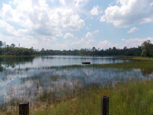 Cypress Lake Plantation : Pierson : Volusia County : Florida