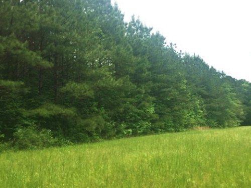 48 Acres For Sale : Starkville : Oktibbeha County : Mississippi