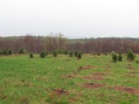 53 +/- Acres Land In Benton : Benton : Luzerne County : Pennsylvania