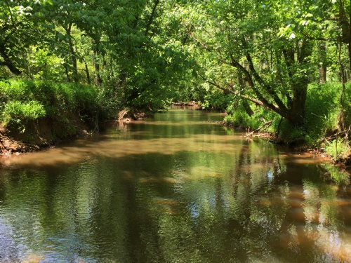 Clouds Creek Jewel : Lexington : Oglethorpe County : Georgia