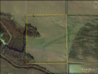 40 Ac Fronting Hodges Rd