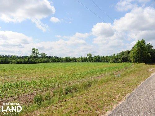 Lake View Hunting Farmland : Lake View : Dillon County : South Carolina