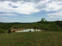 69 Acres 50 Acres Of Pasture