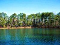Lillia Pond