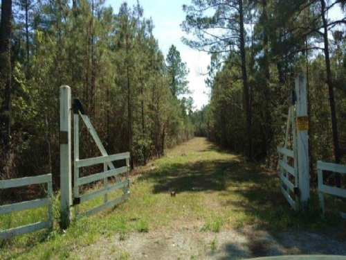 Development, Investment Property : Bolivia : Brunswick County : North Carolina