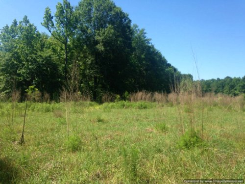 18 Acres : Shubuta : Clarke County : Mississippi