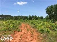 Timber Investment Opportunity With : Thomaston : Upson County : Georgia