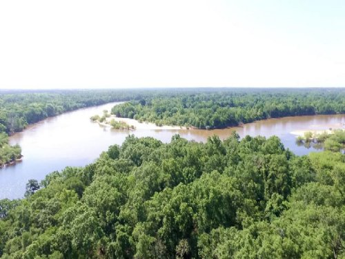 100 Ac Island On River : Baxley : Appling County : Georgia