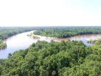 100 Ac Island On River : Baxley : Appling County : Georgia