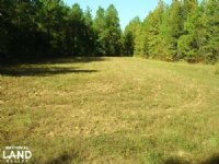 Weekend Hunting Retreat : Buhl : Tuscaloosa County : Alabama