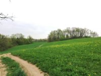 Hunting / Farmland 112 Acres
