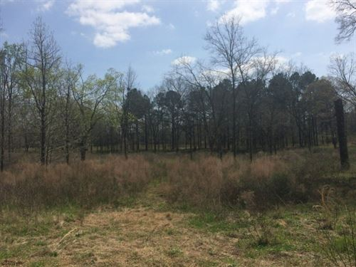 Newman Tract - Development Lot : Americus : Sumter County : Georgia