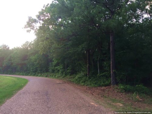 71.5 Acres : Bogue Chitto : Lincoln County : Mississippi