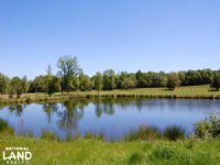 Pasture And Cattle Farm : Lancaster : Lancaster County : South Carolina