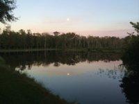 384 Acres Hunting Retreat