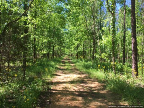 414 ± Ac Hunting/timber Tract : Forest : Scott County : Mississippi